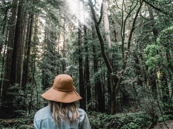 woman immersed in nature while experiencing forest bathing and the benefits of nature wellness travel
