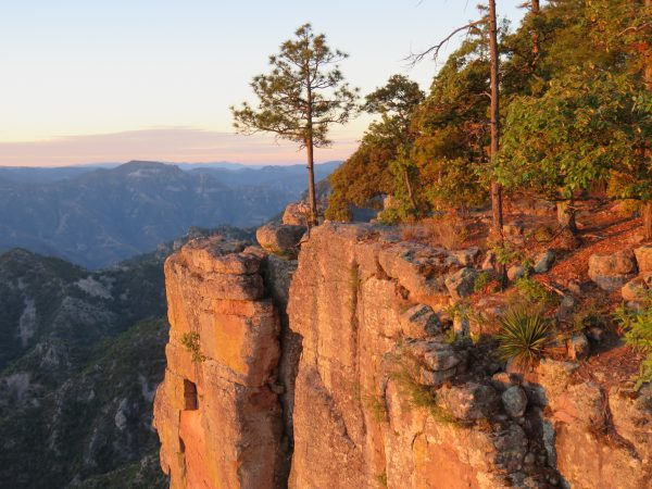 Copper Canyon at sunrise, Chihuahua, Mexico.
