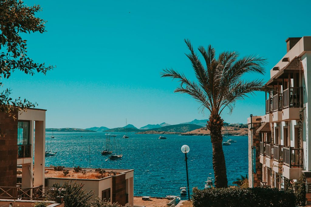the seaside view with palm trees in  Bodrum, turkey - winter getaway