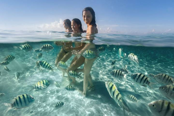 three people swimming with the fishes at Palmaia, House of AiA