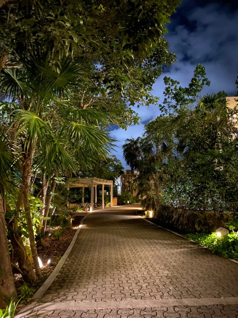 Palmaia Walkway