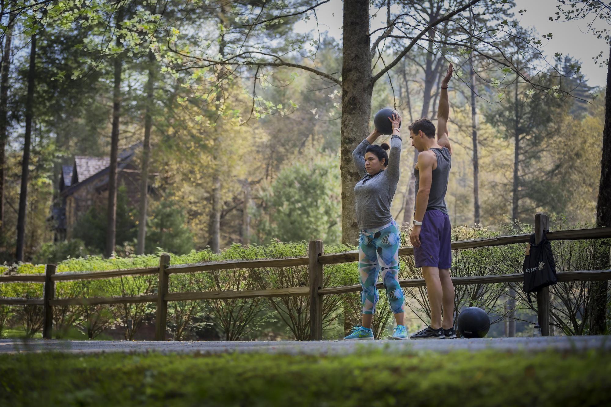 Skyterra Wellness Outdoor Fitness