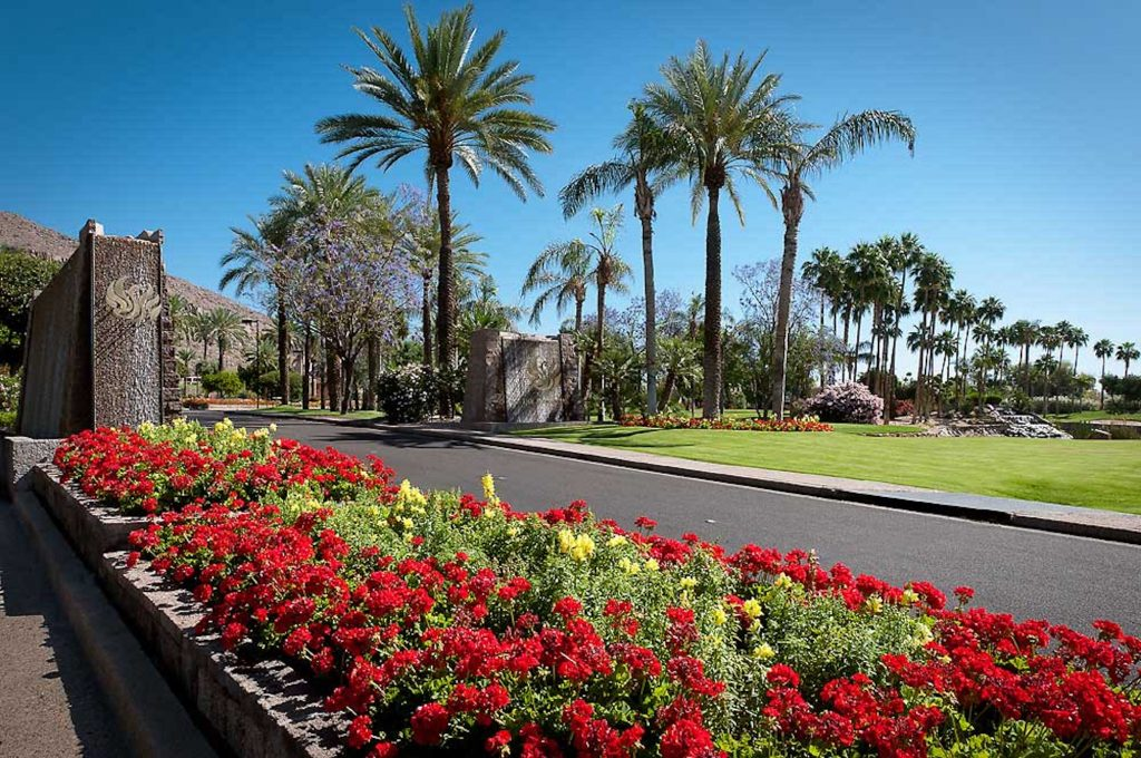 The Phoenician Entry Flowers