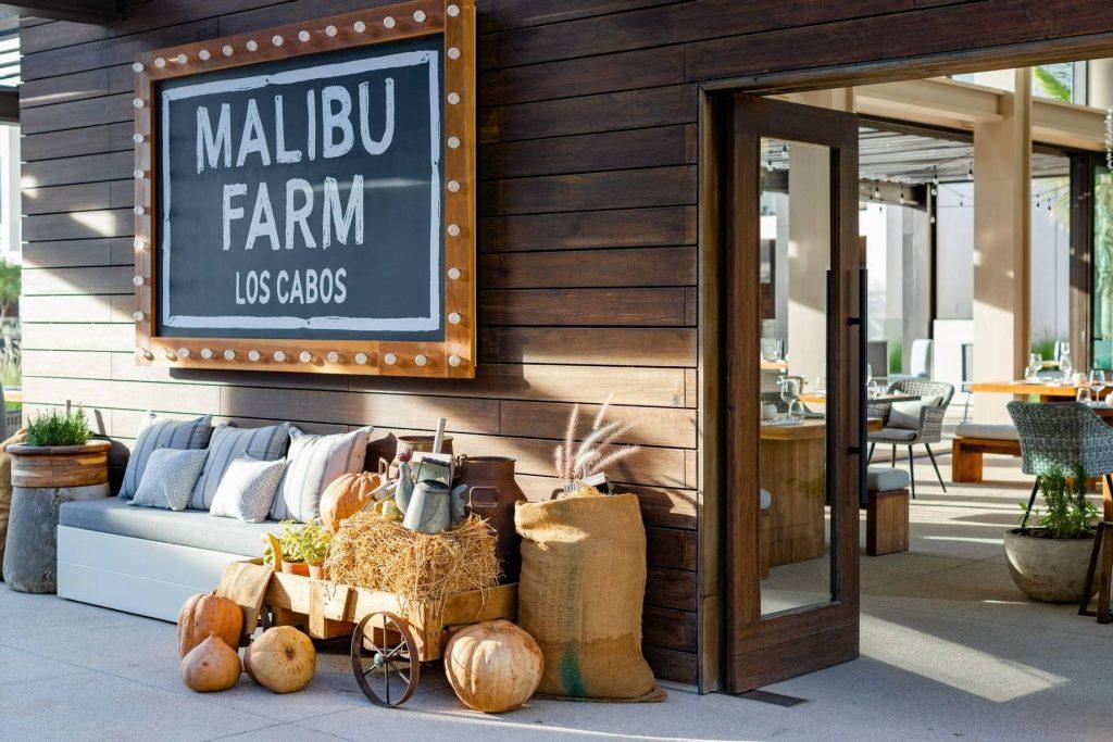 Malibu Farm Los Cabos farm-to-table