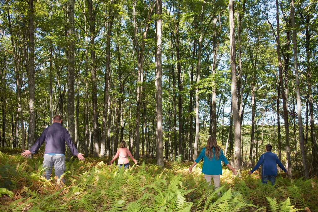 Forest bathing at The Lodge at Woodloch